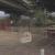 堺市並松公園で大量の六価クロム!どんな危険がある?猫や犬への配慮を!!